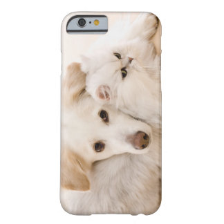 Studio shot of cat and dog barely there iPhone 6 case