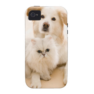 Studio shot of cat and dog vibe iPhone 4 case