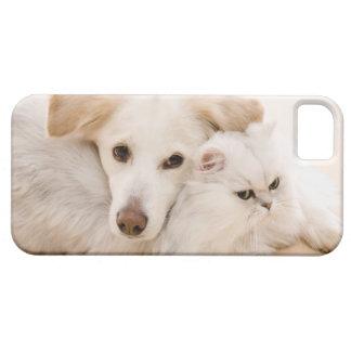 Studio shot of cat and dog iPhone 5 case