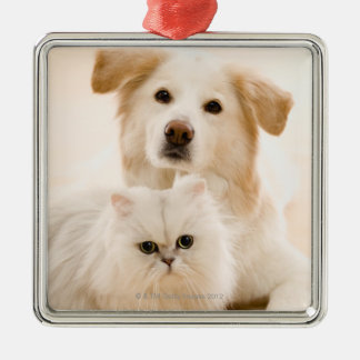 Studio shot of cat and dog Silver-Colored square decoration