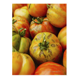 Studio shot of heirloom tomatoes postcard