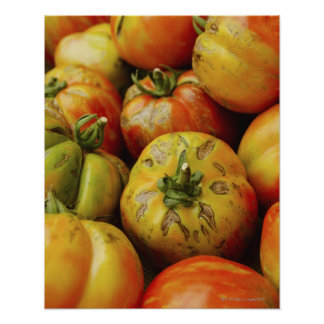 Studio shot of heirloom tomatoes poster