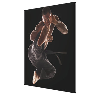 Studio shot of martial arts practitioner in canvas print