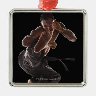 Studio shot of martial arts practitioner in Silver-Colored square decoration
