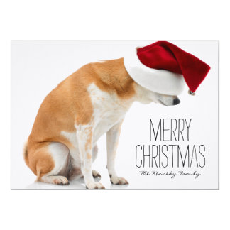 Studio shot of Shiba Inu dog wearing Santa hat 13 Cm X 18 Cm Invitation Card