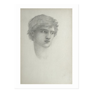 Study for the Head of Perseus (pencil on paper) Postcard