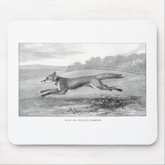 Study of a Fox Mouse Pad