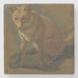 Study of a Fox (oil on panel) Stone Coaster