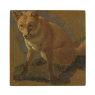 Study of a Fox (oil on panel) Wood Coaster