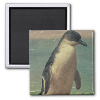Study of a Penguin Magnet