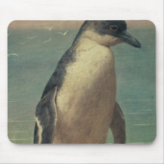 Study of a Penguin Mouse Pad