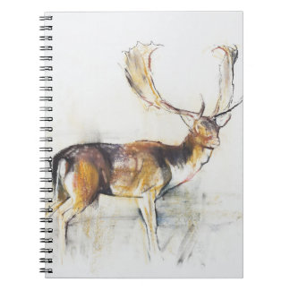 Study of a Stag Notebooks