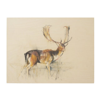 Study of a Stag Wood Wall Art