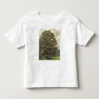 Study of an Ash Tree, c.1851 (oil on paper on pane Tshirt