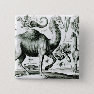 Study of Animals and Flowers, engraved 15 Cm Square Badge
