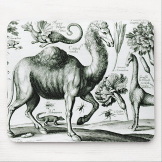 Study of Animals and Flowers, engraved Mouse Mat