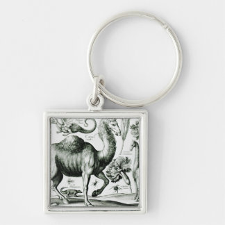 Study of Animals and Flowers, engraved Silver-Colored Square Key Ring
