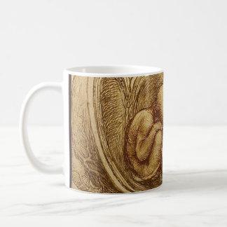 Study of baby fetus by Leonardo da Vinci Basic White Mug