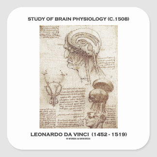 Study Of Brain Physiology (c. 1508) da Vinci Square Sticker