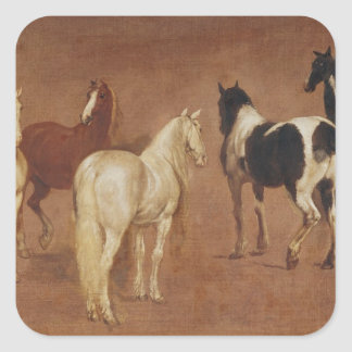 Study of Five Horses Square Sticker