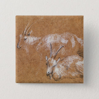 Study of Goats (drawing) 15 Cm Square Badge