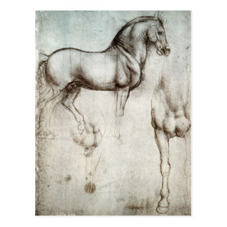 Study of horses - Leonardo da Vinci Postcard