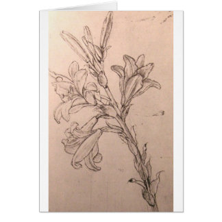 Study of lilies greeting card