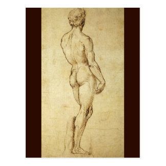 Study of Michelangelo's David Statue by Raphael Postcard