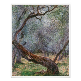 Study of Olive Trees, 1884 Posters