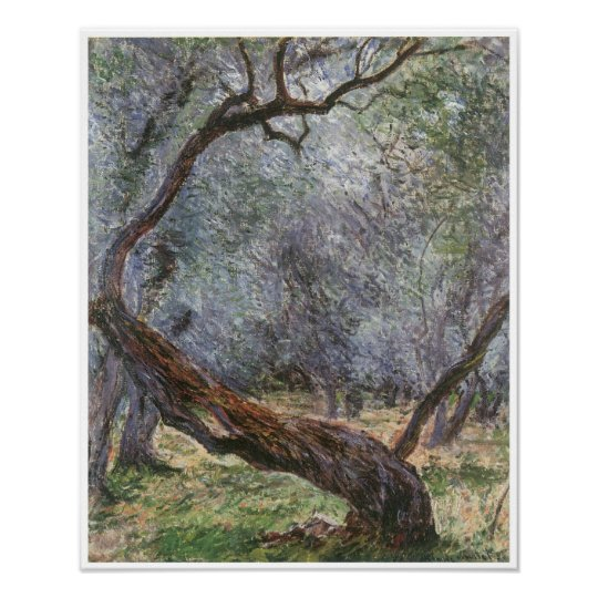 Study of Olive Trees, 1884 Poster