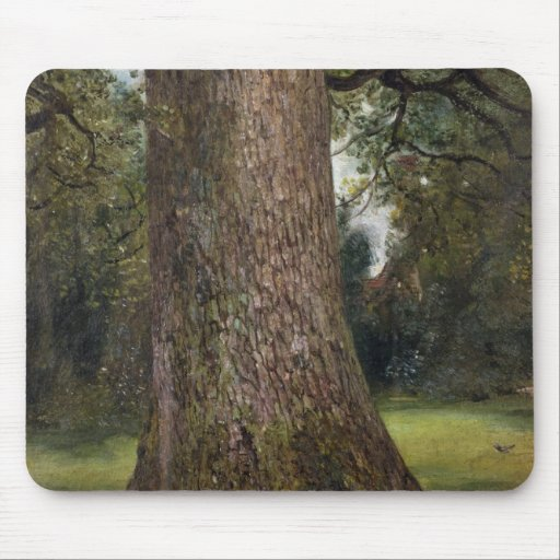 Study of the Trunk of an Elm Tree, c.1821 (oil on Mouse Pads