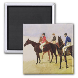 Study of Three Steeplechase Cracks: Allen McDonoug Refrigerator Magnets