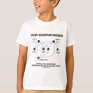 Study Quantum Physics After All You Can Do Things Tee Shirt