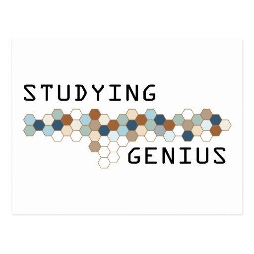 Studying Genius Postcards