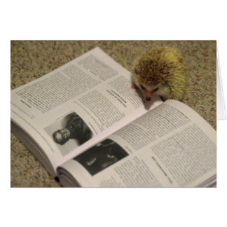 Studying Hedgehog Graduation Card