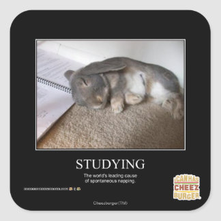 Studying Square Sticker