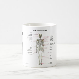 StudyThem Bones... Basic White Mug