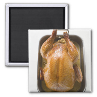 Stuffed roast turkey in roasting tray, close up magnet