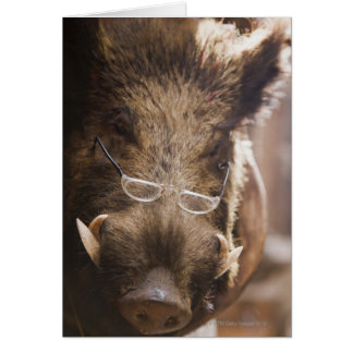 Stuffed Wild Boar Wearing Glasses Outside Card