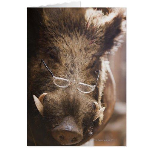 Stuffed Wild Boar Wearing Glasses Outside Greeting Card