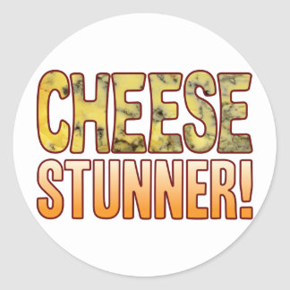 Stunner Blue Cheese Classic Round Sticker