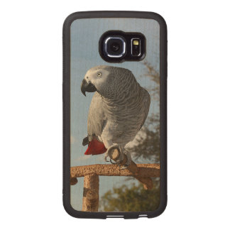 Stunning African Grey Parrot Wood Phone Case