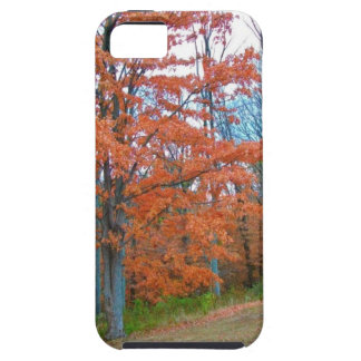 Stunning Autumn Scenery iPhone 5 Cover