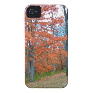 Stunning Autumn Scenery iPhone 4 Case-Mate Cases