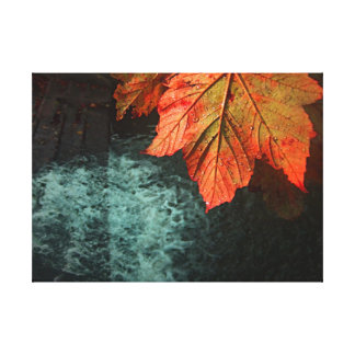 Stunning Autumnal Leaf Overlooking Waterfall Canvas Print