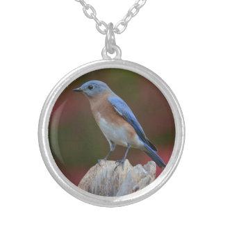 Stunning Bluebird Necklace