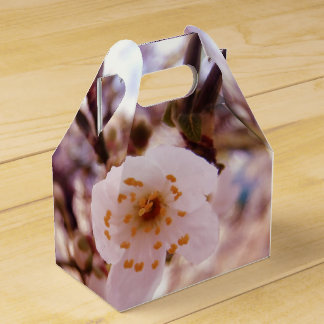 Stunning Clean Golden Japanese Blossom Wedding Favour Box