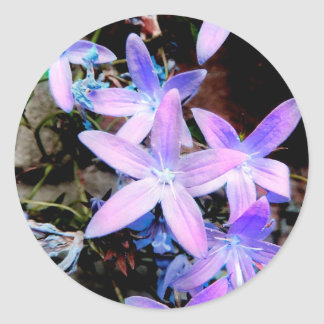 Stunning Delicate Lilac Abstract Wild Flowers Classic Round Sticker