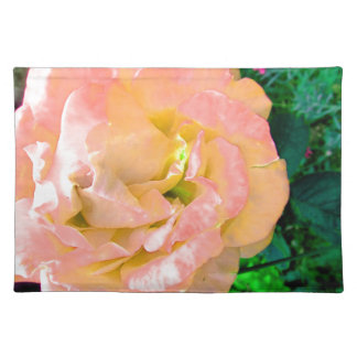 Stunning Delicate Peach Pink Garden Rose Placemat