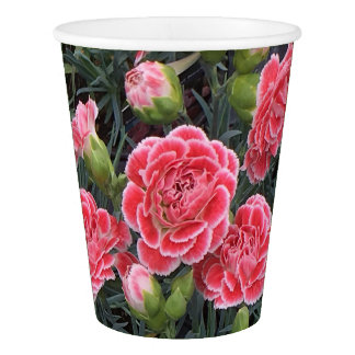 Stunning Dianthus Paper Cup